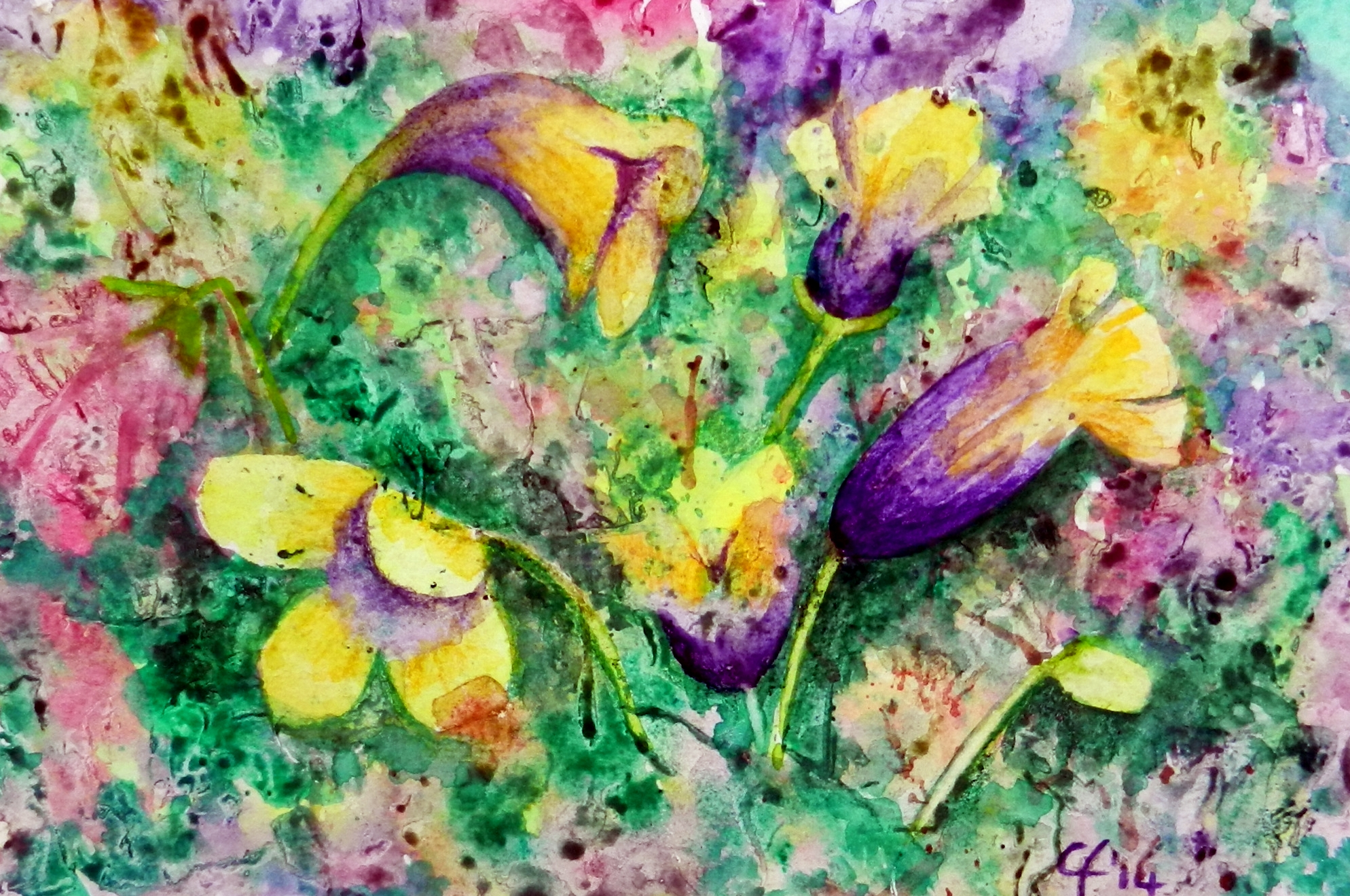 Primroses, Primule, Watercolor, Painting, Nature, Flowers, Spring, Clara Fruggeri