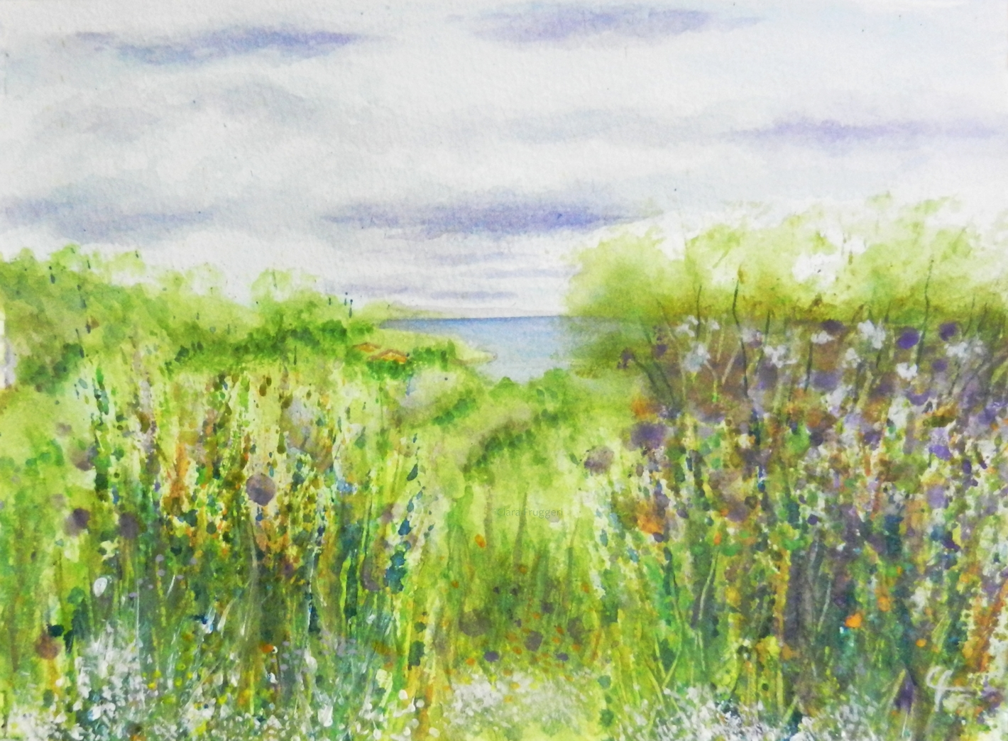 A view of the sea, Una vista del mare,  Watercolor, Painting, Nature, Landscape, Clara Fruggeri