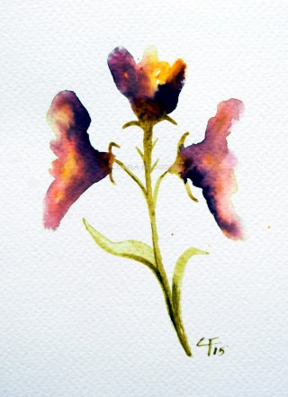 Watercolors, Clara Fruggeri