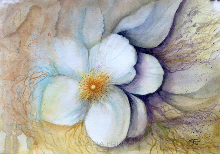 Philadelphus flower, Watercolor, Flowers, Colors, Nature, Clara Fruggeri