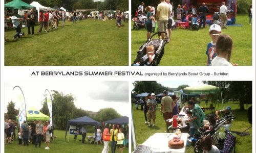 At Berrylands Summer Festival